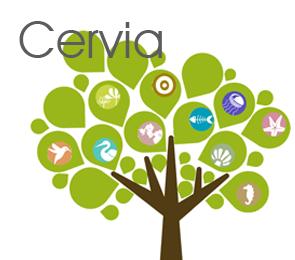 Residenze a Cervia